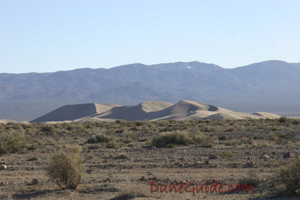 Clayton Valley Sand Dune Guide